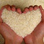 La dieta del riso per dimagrire in 7 giorni: cos'è e come funziona